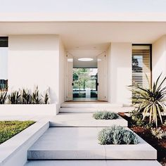 Grand Designs Australia: Series 2 Episode 1 2019 the way you can see all the way to the backyard yard and love the succulents in the front steps. If only The post Grand Designs Australia: Series 2 Episode 1 2019 appeared first on Architecture Decor. Modern Entrance, Entrance Design, House Entrance, Entrance Ideas, Grand Entrance, Modern Front Yard, Modern Entry, Entrance Decor, Entryway Ideas