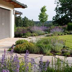 Zahrada zvlněná | Atelier Flera Boxwood Garden, Herb Garden, Mystic Garden, European Garden, Modern Garden Design, Outdoor Spaces, Outdoor Decor, Yard Design, Landscape Architecture