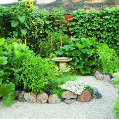 a circular garden plan...lush and gorgeous. This pic is from August