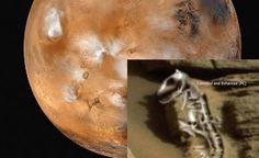 Esqueça Água em Marte! Dinossauro Fossilizado Encontrado no Planeta Vermelho