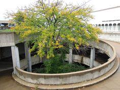 Spiral Ramp for Underground Parking Garage at Crestwood Court (Plaza) Dead Mall in Crestwood, MO_DSCN2120