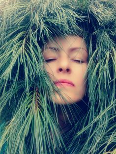 Immersion in my favourite pine #design #photography