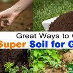 6 Great Ways To Get Super Soil For Garden