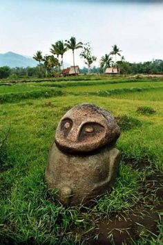 megalithic statues in Lore Lindu National Park, Central Sulawesi, Indonesia