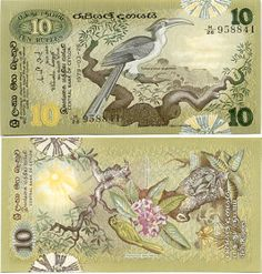 Sri Lanka  10 Rupees 26.3.1979 (Grey Hornbill (Tockus Gingalensis); Velvet Tamarind tree (Dialium Ovoideum); birds; trees; frog)