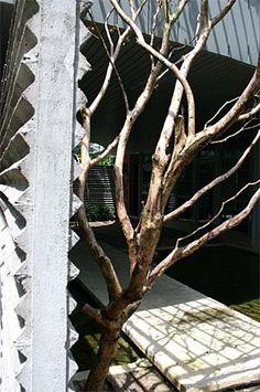 Project: PJ8 Showhouse | SEKSAN DESIGN - Landscape Architecture and Planning