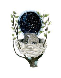"""Star Map by Diana Sudyka: 11 x 14"""" Giclee print. #Illustration #Star_Map #Diana_Sudyka"""