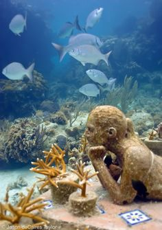 Underwater Sculpture by Jason deCaires Taylor Underwater Ruins, Underwater Hotel, Underwater Sculpture, Underwater Pictures, Miguel Angel, Jason Decaires Taylor, Under The Ocean, Underwater Photography, Art Photography