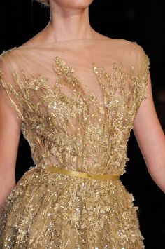 Elie Saab fall 2012 gold gown