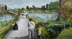 112305_Fernhill_Wetlands_Boards-5