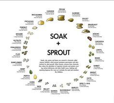 Soak & sprout chart for feeding birds & parrots