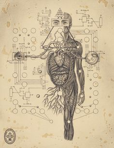 Soul Of Science - Kunstbuch von Daniel Martin Diaz - spirit - - Abstract Psychedelic - Art Psychedelic Art, Art Visionnaire, Psy Art, Occult Art, Anatomy Art, Human Anatomy, Inspiration Art, Visionary Art, Sacred Art
