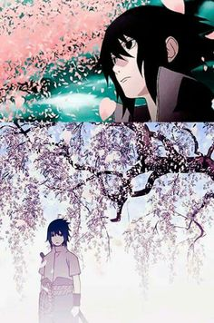 Has anyone else noticed that Sasuke is often pictured standing in a field of cherry blossom trees?