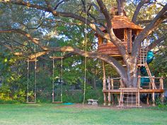 Even the Treehouses Are Bigger in Texas/ Love the slide idea- you can just see it behind the tree.