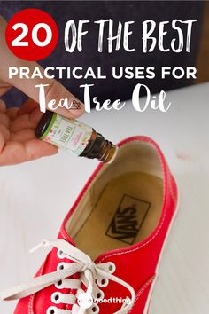 When it comes to keeping things clean and sanitary, tea tree essential oil is great to have on hand! Check out these 20 household uses for tea tree oil. ~ One Good Thing Tea Tree Essential Oil, Doterra Essential Oils, Essential Oil Diffuser, Essential Oil Blends, Doterra Tea Tree Oil, Doterra Oil, Tea Tree Oil Uses, Tea Tree Oil For Acne, Young Living Oils