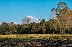 La riserva naturale della palude Brabbia è una riserva regionale della regione Lombardia istituita nel 1984. La prov .di Varese che è l'ente gestore, ha dato