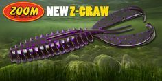 Gerald Swindle helps introduce the new Z-Craw. It takes the place of a lot of other lures and should excel in a wide variety of situations.