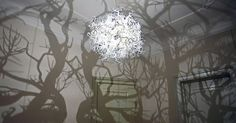 This stunning Forms in Nature Chandelier projects a 360-degree forest of shadows that transforms any room into a fairy tale landscape.  http://inhabitat.com/hildendiazs-forms-in-nature-chandelier-transforms-rooms-into-fairytale-landscapes/forms-in-nature-chandelier/