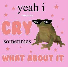 Really Funny Memes, Love Memes, Stupid Funny Memes, Funny Relatable Memes, Haha Funny, Memes Lol, Frog Meme, Response Memes, Current Mood Meme