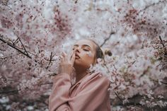 Tabi in Cherry Blossoms — Emily McLaughlin Photography
