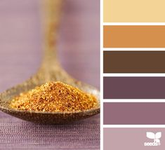 Purples & terra cottas just right for a high Depth or Intimacy value. | spiced tones via Design-Seeds | commentary via The Voice Bureau at AbbyKerr.com