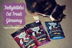 Delightibles Cat Treats Review and Giveaway   Pawsitively Pets