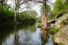Onion Creek ~ Austin