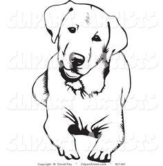 Vector 21481 Cute And Curious Labrador Retriever Dog Lying Down