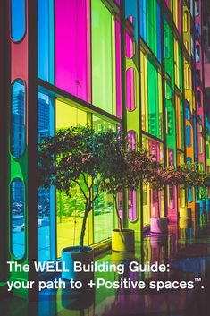 Multicolored rainbow glass windows with potted trees in front in urban street Color Splash, Luz Solar, Photography Jobs, Rainbow Photography, Photography Competitions, Mobile Photography, Digital Photography, Neon, Design Graphique