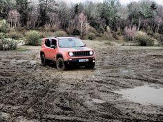 Slindon Safari near Chichester on January 2016 31st January, Jeep Cj, Chichester, Wrangler Jk, Safari, Club