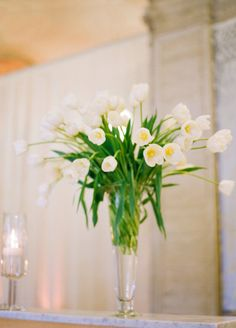 White Tulips In A Trumpet Vase