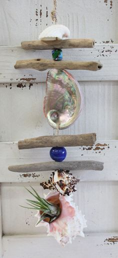 Air Plant Driftwood and Shell Dangle with Pink Murex Seashell - Handmade Shell Crafts - California Seashell Company