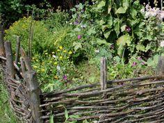 Quelles plantes pour un jardin en permaculture