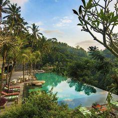 Jungle Fish Bar #Bali #Jetset