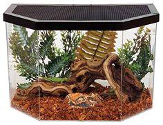 KollerCraft Repitat Flat-Backed Reptile Habitat, 5-Gallon... https://www.amazon.com/dp/B001B4TUBO/ref=cm_sw_r_pi_awdb_x_18uEzb8EVTPT6