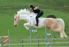 palomino pinto... also rider with serious skills