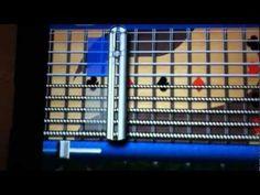 Pedal Steel app tutorial - YouTube Lap Steel Guitar, Ios, Youtube, Youtubers, Youtube Movies
