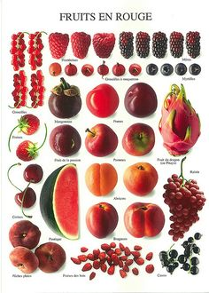 Red fruit in French - PHC 2598 - Fruits en rouge - Nouvelles Images Red Fruit, Fruit Art, Fruit And Veg, Fruits And Vegetables, Exotic Fruit, Image Fruit, Fruit Picture, Food Charts, Nutrition