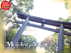 "giani ""Torii""(鳥居) of Meiji-jingu, the biggest wooden Torii in Japan."