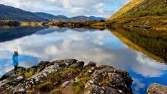 Image result for killarney co kerry Tourist Center, Cruise, Explore, Ring, Water, Flowers, Outdoor, Image, Water Water