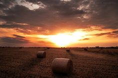Sunset at Wyreema #sunset #country #travel Photo by Simon Diete Photography