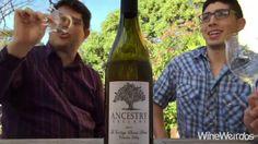 2014 Ancestry Cellars Le Cortege Chenin Blanc - Affordable Pleasant Date Night White Wine