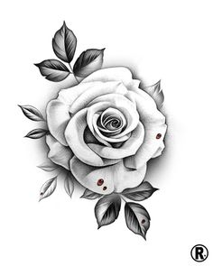 Dm or email for availability 🗓 rose tattoos, horticult White Rose Tattoos, Rose Flower Tattoos, Rose Tattoos For Women, Flower Tattoo Designs, Tattoo Roses, Floral Tattoos, Rose Drawing Tattoo, Tattoo Design Drawings, Tattoo Sketches