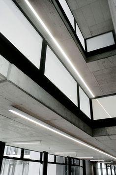 Idaho, Lighting Design, Stairs, Home Decor, Lights, Light Design, Stairway, Decoration Home, Room Decor