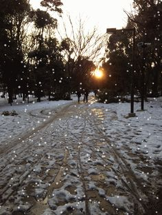 Tokyo - 2014 Winter