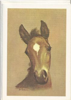 Foal by CW Anderson. How I poured over all his book illustrations when I was a girl! Tried endlessly to draw like him!