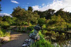The Japanese Pond at the Bergius Botanic Garden — at Bergianska Trädgården, Stockholm, Sweden