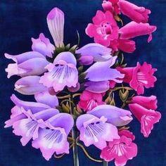 silk painting designs - Norton Safe Search