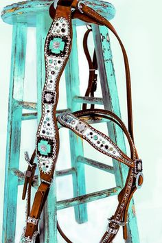 White and turquoise breast collar, the stool isn't bad either.