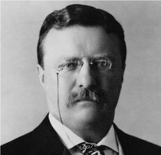 """""""Far better is it to dare mighty things, to win glorious triumphs, even though checkered by failure... than to rank with those poor spirits who neither enjoy nor suffer much, because they live in a gray twilight that knows not victory nor defeat.""""             - Theodore Roosevelt"""